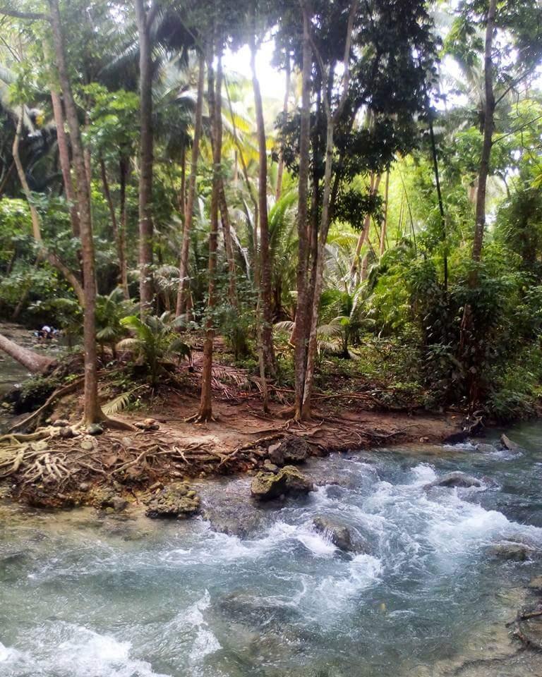 how to get to kawasan falls