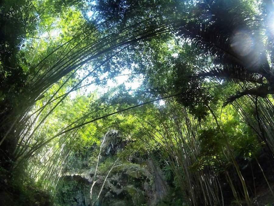 Tumalog Falls blog