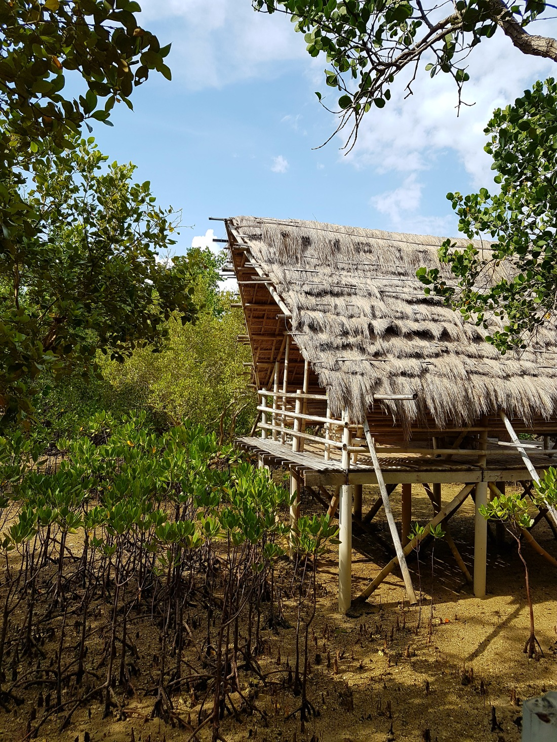 Where to stay in Negros