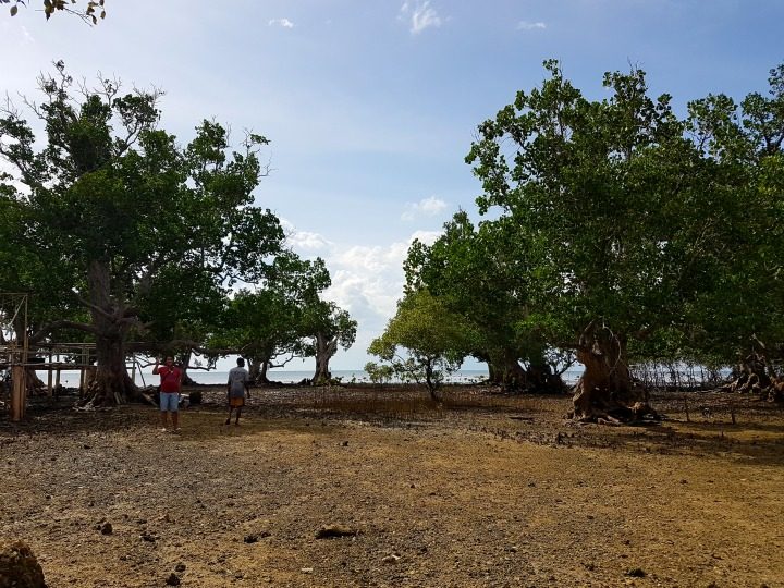 List of Places to visit in Visayas