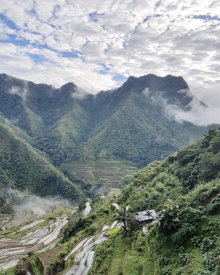 Philippine Rice Terraces