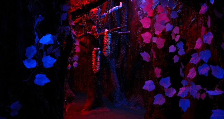 Set - Enchanted Forest 1